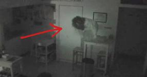 Всеки ден от кухнята му изчезвало храна. Един ден решава да постави камера. Когато видял записаното останал шокиран! (ВИДЕО)
