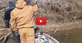 Рибари чуват странен вик от животно... Вижте кой се подава насреща, когато се приближават се към брега на реката. ИЗГЛЕДАЙТЕ това ТРОГАТЕЛНО ВИДЕО!