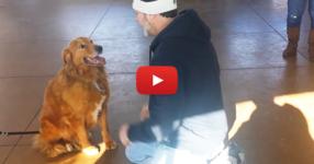 Той отива в приют за животни, за да се срещне с кучето си, което се изгубило преди 20 месеца! Това, което се случи, ще ви остави без думи! (ВИДЕО)