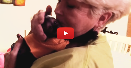 Тази баба идва на гости. Почакайте обаче, докато видите как я посреща малката маймунка! (ВИДЕО)