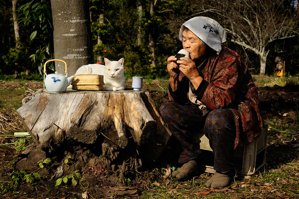 баба и котка
