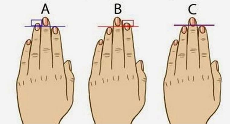 размера на пръстите говорят много неща за вас