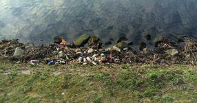 Един холандец го нервирало боклука, който виждал всеки ден по пътя за работа... ВИЖТЕ КАКВО НАПРАВИ!
