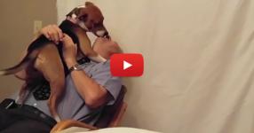 Вижте как кучето се радва на новия си собственик след осиновяването му... (ВИДЕО)