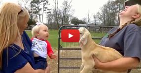 Това малко момиченце и козленцето имаха сериозен разговор между тях. Ще останете омагьосани, когато ги чуете! (ВИДЕО)
