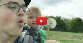 Вижте как се хили малкото бебенце, когато таткото духва глухарче... Няма такъв сладур! (ВИДЕО)