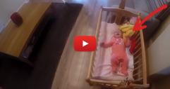 Кучето чува виковете на бебето от детската стая. Ще останете очаровани, когато видите какво прави кучето, за да успокои бебето! (ВИДЕО)