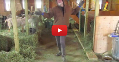 Този фермер танцува толкова забавно на една популярна песен, че няма начин да не се усмихнете! (ВИДЕО)